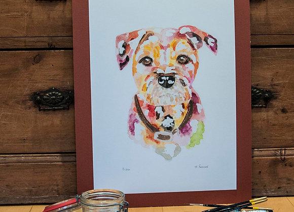 A3 Giclée Print - Border Terrier