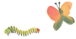 TeacherLedIllustration_caterpillar_edite