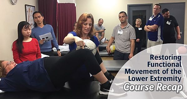 Lower Extremity Functional Movement | Recap