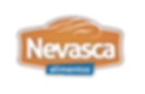 Logo Nevasca baixa-03.png