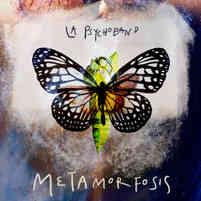 metamorfosis-alta.jpg