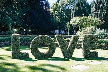 5ft Topiary LOVE.JPG