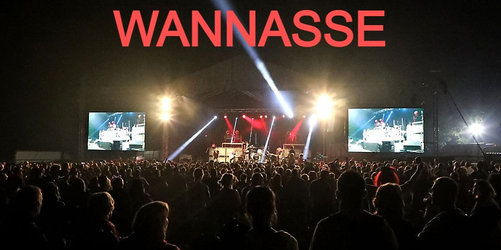 Blondied at Wannasee Festival Penrith