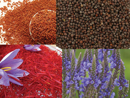 Well-known herbs & their benefits