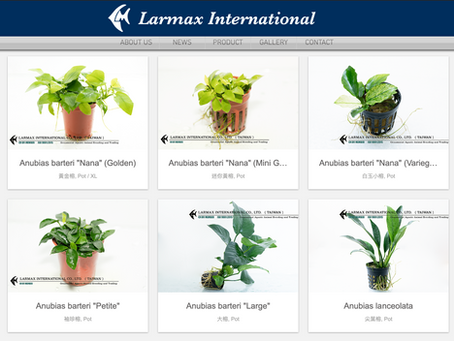 CATALOG UPDATED:WATER PLANTS