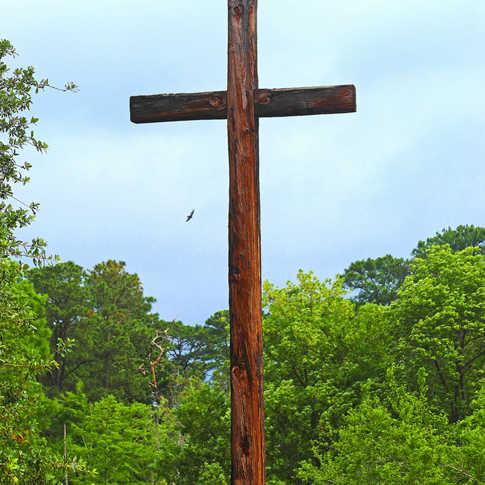 0011_AK0A0529_Cross_Church_Dig_at_Jamest
