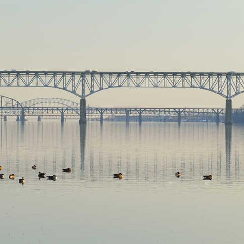 0045_Bridges.jpg