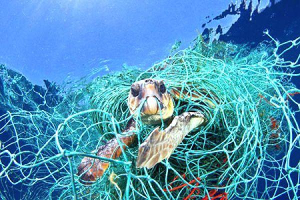 poluição, impacto, plásticos, curso, mergulho, rio, padi, scuba, diver