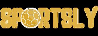 Logo V5 détouré.png