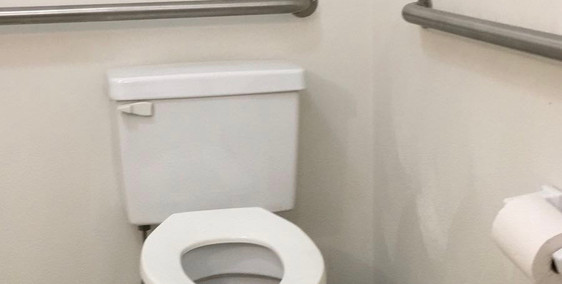 Standard toilet with grab bars