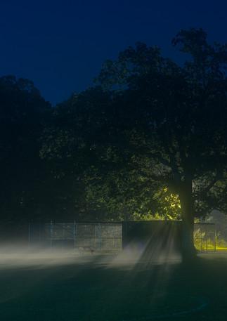 Foggy Night