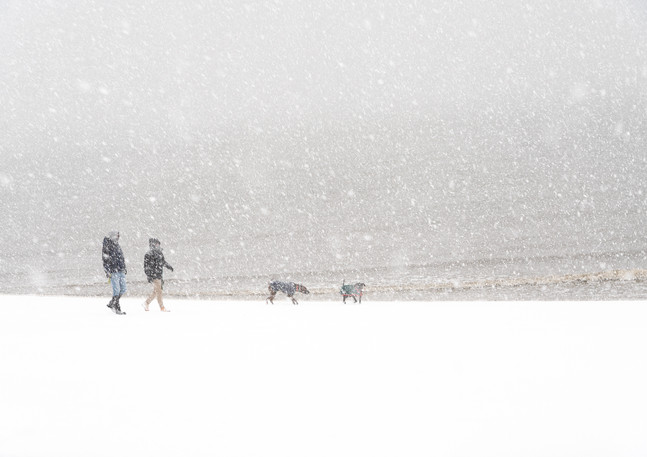 Dogwalkers in the Blizzard