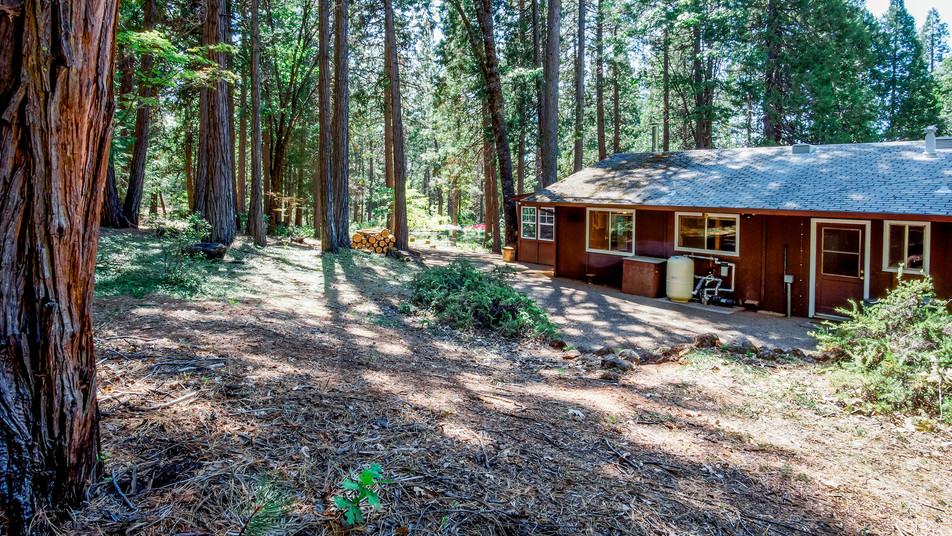 Cabin Exterior Back.jpg
