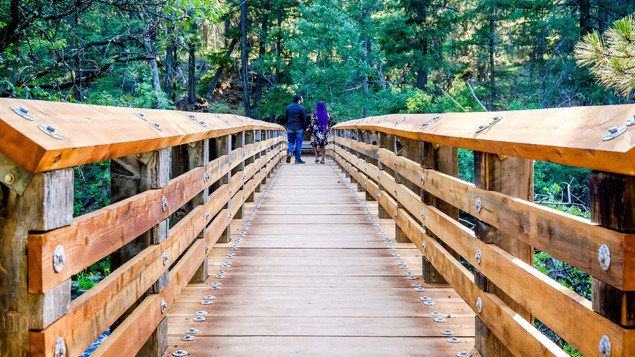 Sharon & Frank Bridge  2-112.jpg