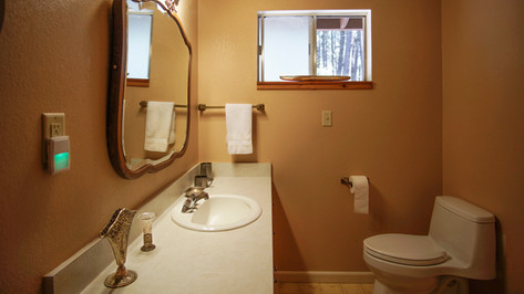 2nd Guest Bathroom View 2.jpg