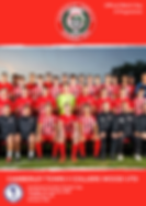 Colliers Wood Cup FC.png