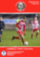 Southall FC.png