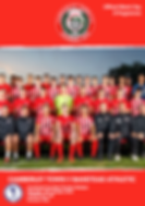 Banstead FC.png