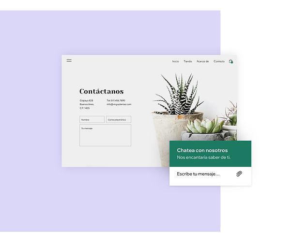 Página de contacto y chat en vivo para una tienda online de plantas de interior