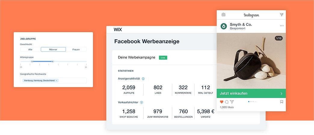 Facebook Ads Kampagne für einen Onlineshop für Accessoires mit Kampagnenüberblick, Publikumsanalyse und Instagram-Werbung.