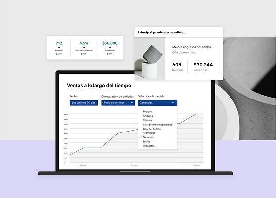 Análisis basado en datos e reportes internos para una página web de eCommerce de Wix
