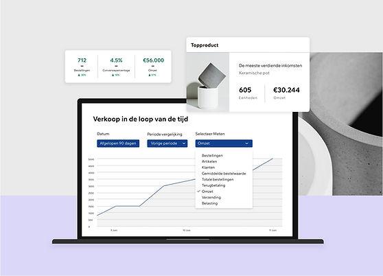 Datagestuurde analyse- en inzichtrapporten voor een Wix eCommerce website