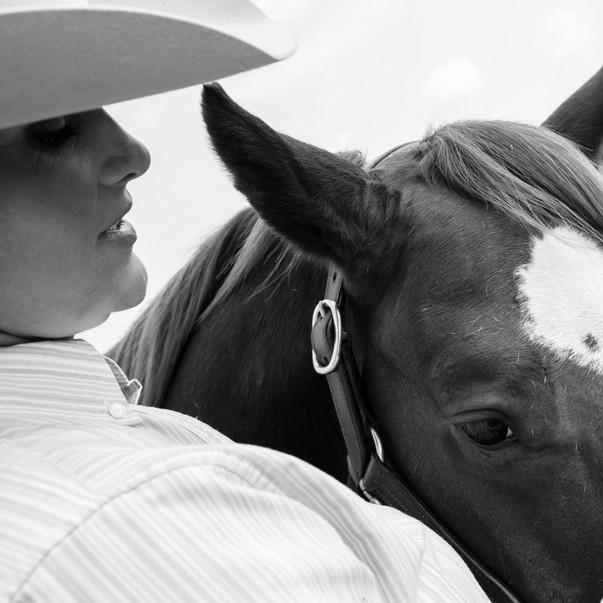 Equestrian Portraits.jpg