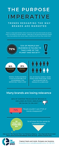 Social Purpose Infographic
