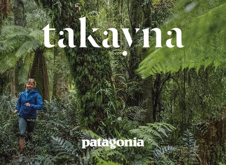Patagonia - A Brand With Significance