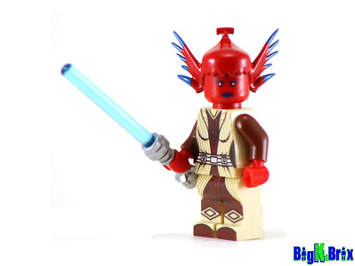 TIPLEE Custom Printed on Lego Minifigure! Star Wars