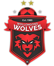 Wollongong-Wolves-Emblem-Shadows-and-Gra