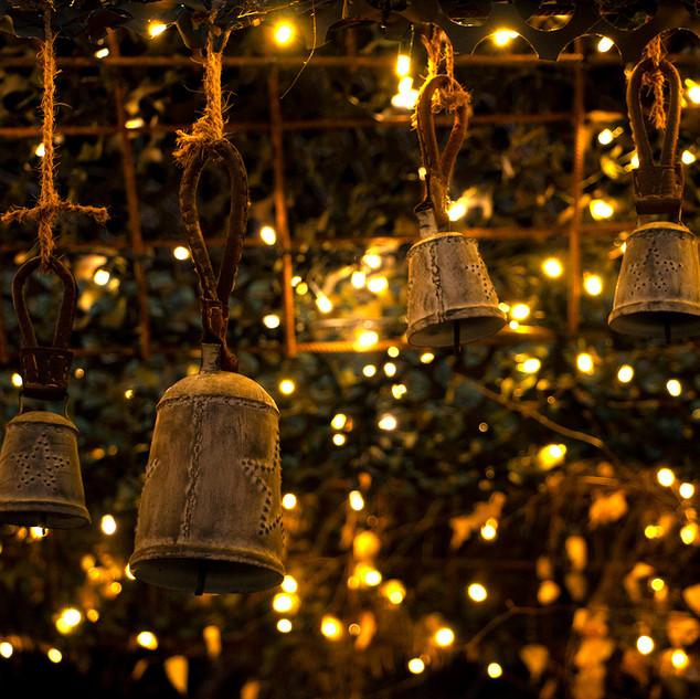 Batiplus_Noël2020_LisetteNicod_7362.jpg