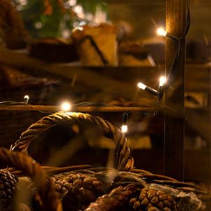 Batiplus_Noël2020_LisetteNicod_7342.jpg