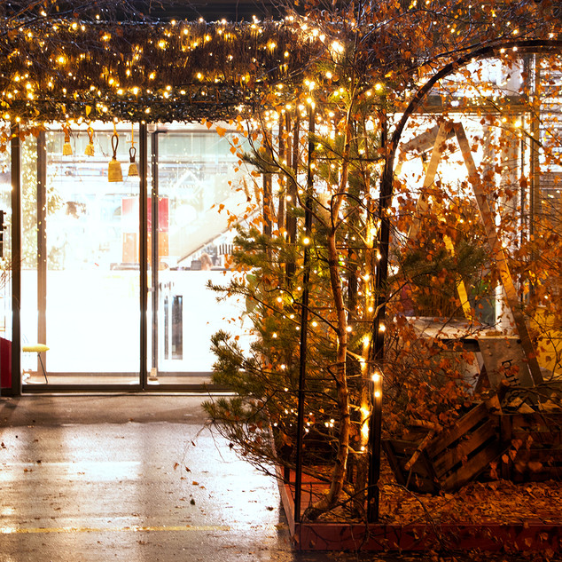 Batiplus_Noël2020_LisetteNicod_7391.jpg