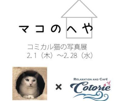 マコちゃん写真展