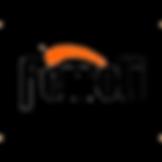 Ferroli boiler service