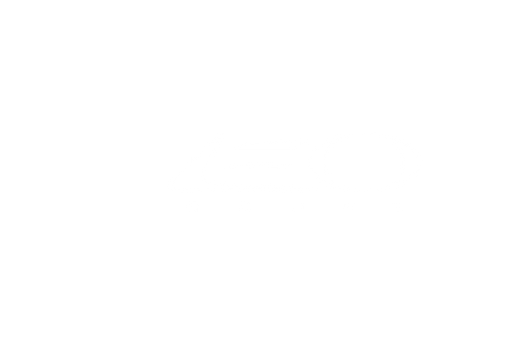 LEO Coupe_Update_white.png