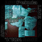 Pekula Arp Vol 1.jpg
