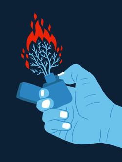 Waldbrand_Feuerzeug_DS