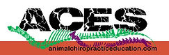 chiro logo for website.jpg