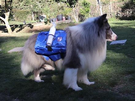 Mochila para Cão