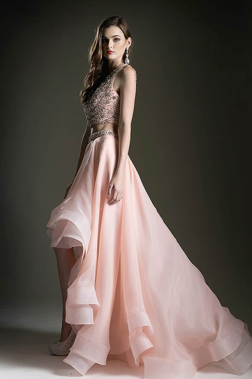 EVENING GOWN - BLUSH TWO-PIECE ANDREA LEO BEADED GOWN