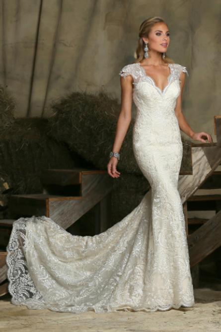 Da Vinci Lace Bridal Gown