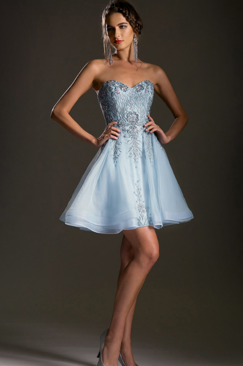 Embroidered Bodice Cocktail Dress