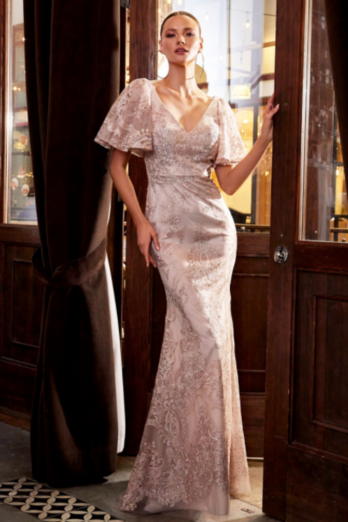 Embellished Lace Sheath Evening Gown