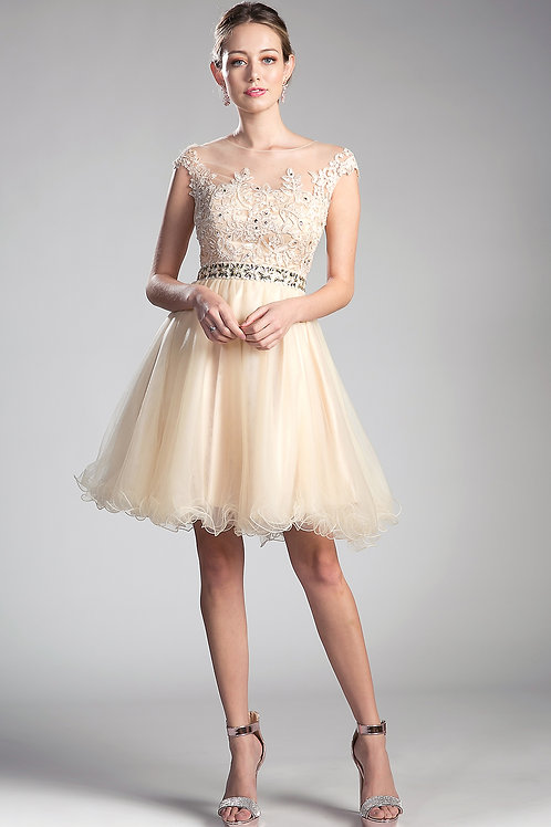 Party Short Gown With Illusion Neckline