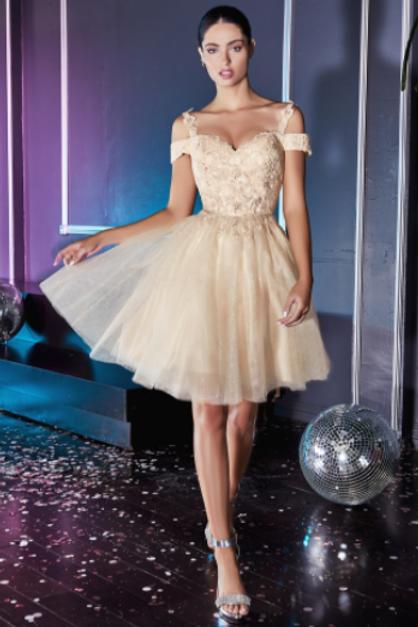 Cinderella Divine Short Cocktail Dress