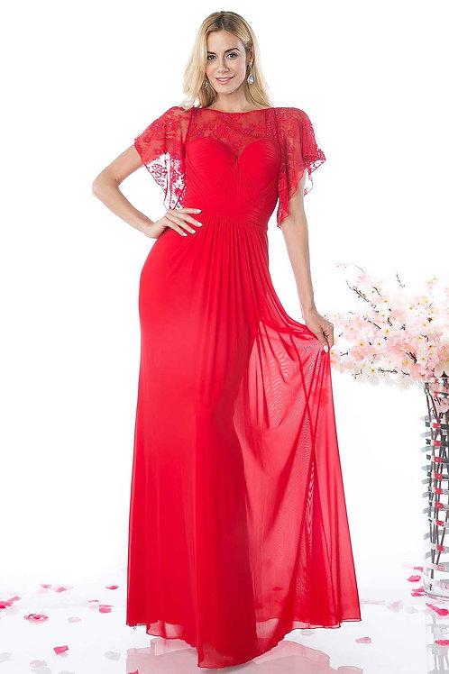 Long Chiffon Evening Gown