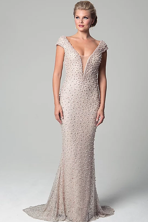 Ultra Stunner Beaded Embroidery With Deep V-neck Gown