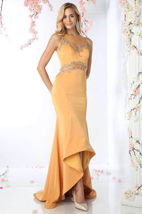 Long Prom /Evening Dress